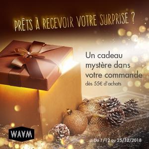 Cadeau mystère 1